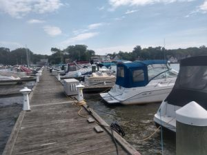 view from dock of boats in slips