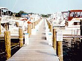 view of a boat dock