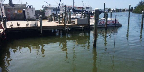 Docks at Fort Myers marina